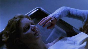 BuffyFreezer