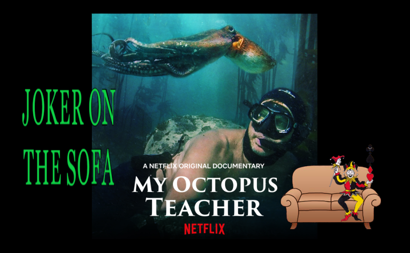 My Octopus Teacher: You Wouldn't Believe You Could Love a Cephalopod – Netflix Oscar Review